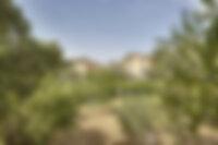 Domaine Lavande