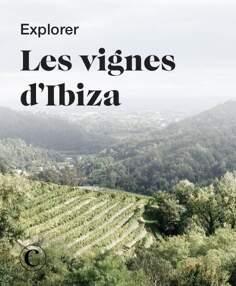 Explorer les vignes d'Ibiza