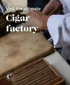 Visit the ultimate cigar factory