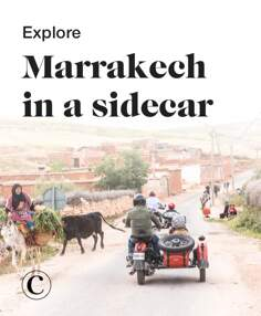 Explore Marrakech in a sidecar