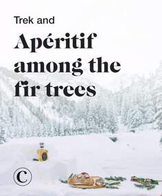 Trek and apéritif among the fir trees