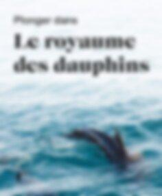 Plonger dans le royaume des dauphins