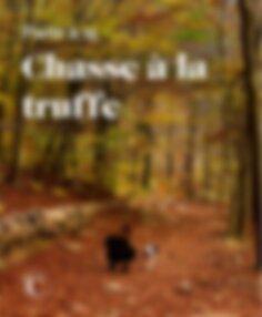 Partir à la chasse à la truffe