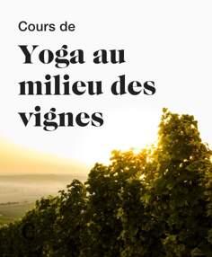 Cours de yoga au milieu des vignes