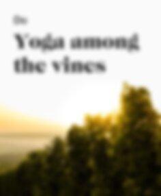 Do yoga among the vines