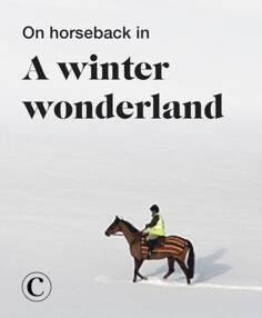 On horseback in a winter wonderland
