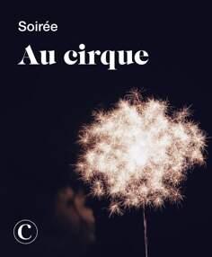 Soirée au cirque