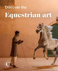 Discover the equestrian art