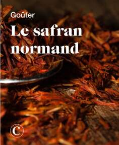 Goûter le safran normand
