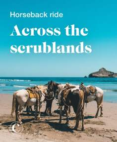 Horseback ride across the scrublands
